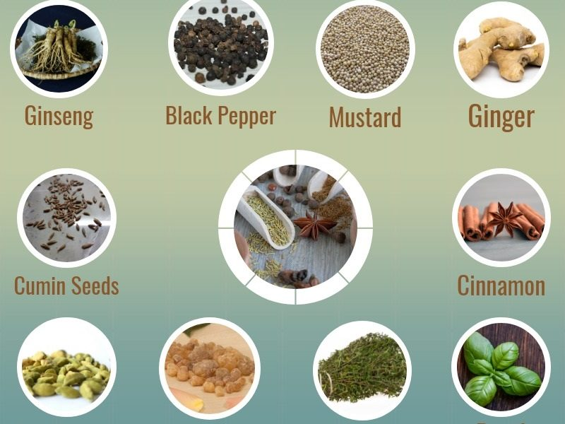 Scientifically Proven Herbs and Spice to Lose Weight Faster
