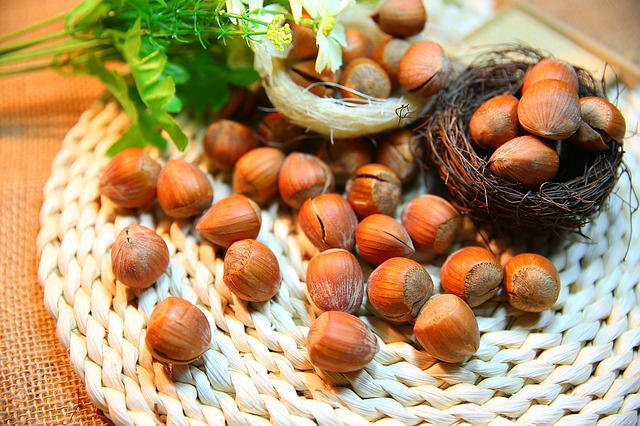 hazelnut to lose belly fat