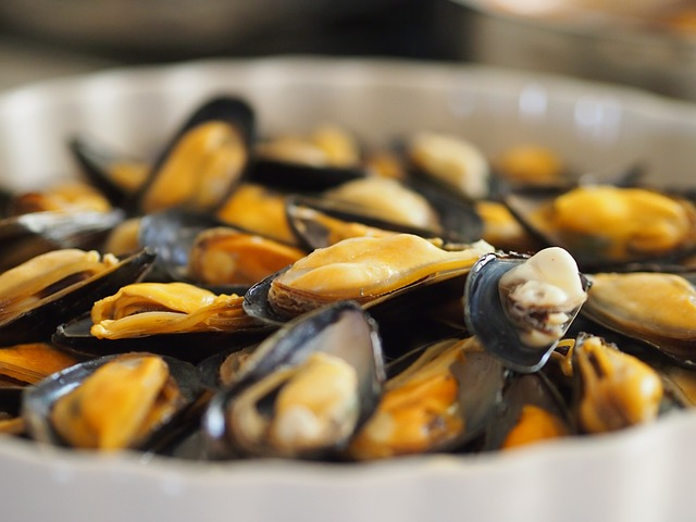 clams Ketogenic diet