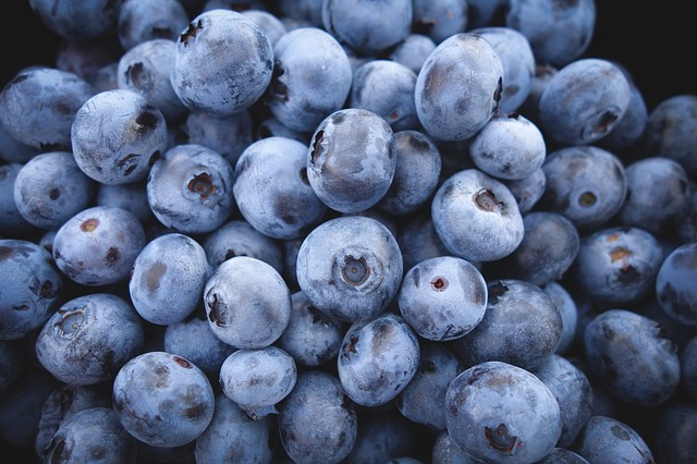 Blueberries helps to fight heart attack